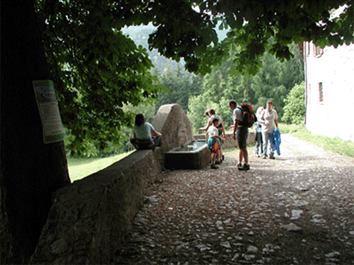 gruppo-fontana