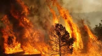 Contro gli incendi boschivi