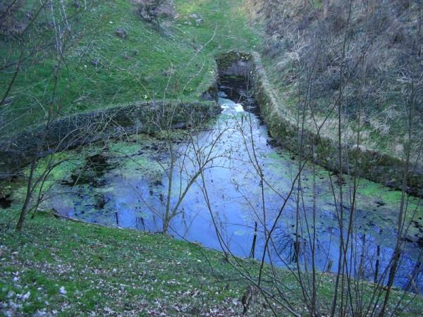 1. La Testa del Nan, uno dei più grandi fontanili lombardi, quello che alimenta la Roggia