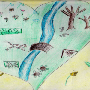 Il Fiume che Vorrei: progetto di Educazione Ambientale per le Scuole Primarie